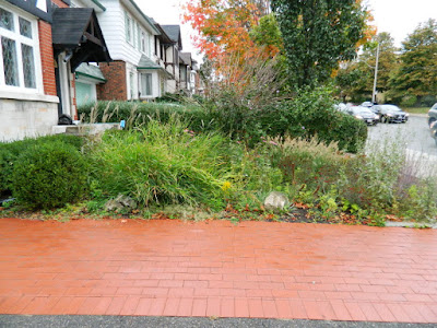 Paul Jung Gardening Services Midtown Toronto Fall Garden Cleanup before