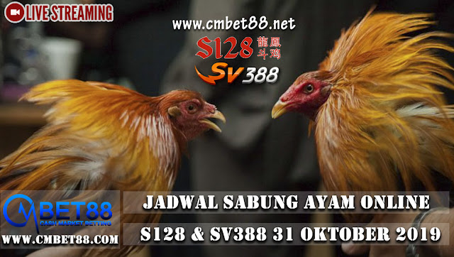 Jadwal Live Streaming Sabung Ayam