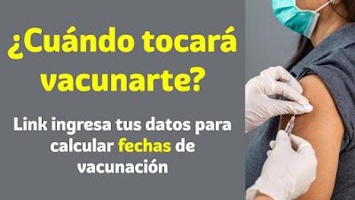 ¿Cuando te tocará vacunarte? Ingresa tus datos para calcular cuando será tu turno.