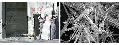 directory of asbestos removal companies