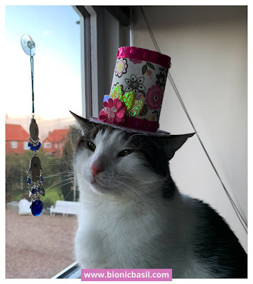 Easter Special Crafting with Cats ©BionicBasil® How to Make An Easter Top Hat - Melvyn