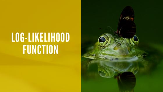 Log-likelihood function