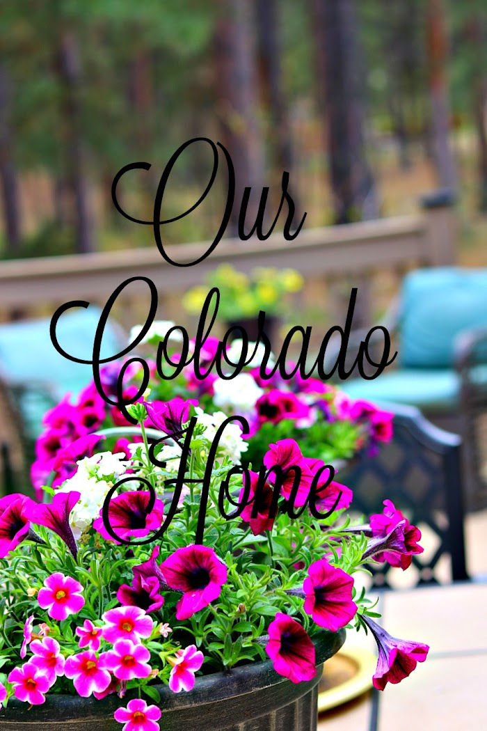 Colorado Cottage Kitchen Makeover|Plodding Along
