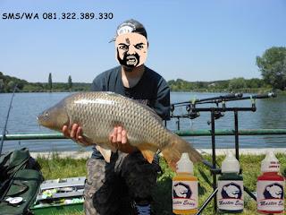 Essen Ikan Mas Subang Khusus Di Danau