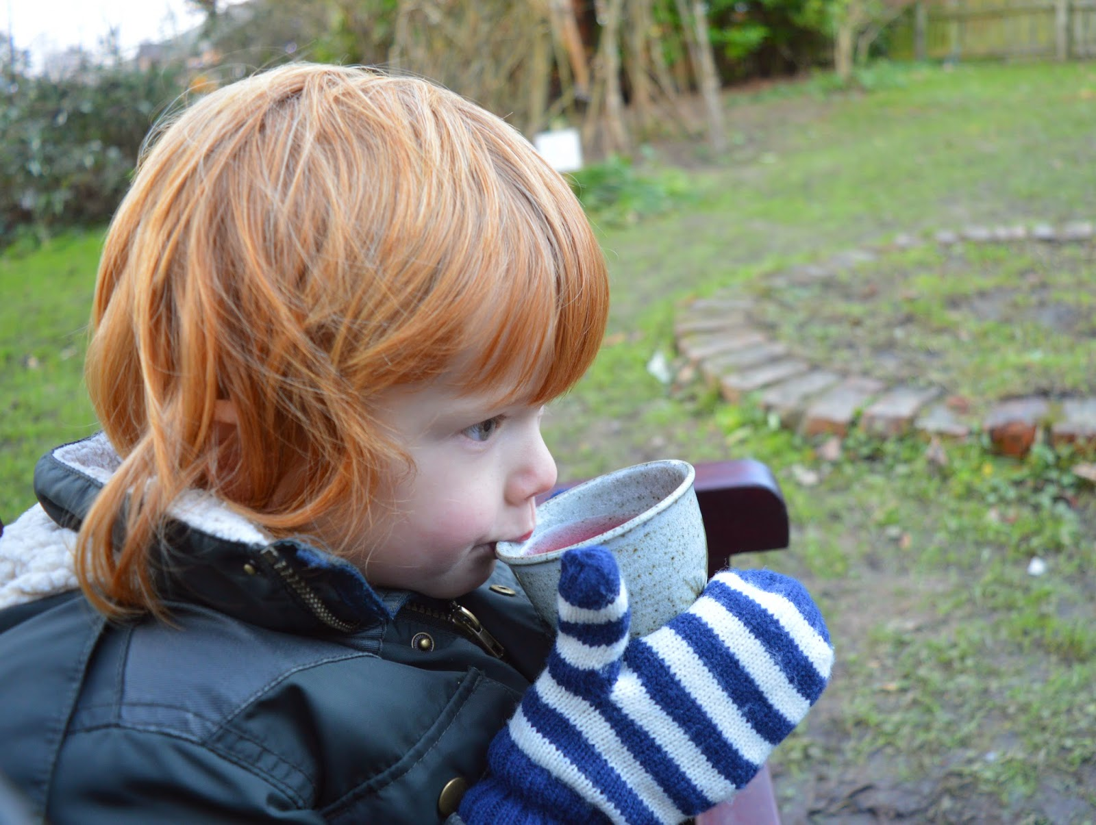 Santa's Grotto at Rising Sun Countryside Centre, North Tyneside - A review - drinking warm juice by the campfire