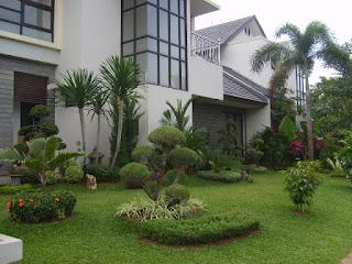 membuat taman minimalis di lahan sempit