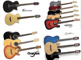 Виды электро-акустических гитар