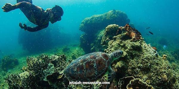 konsumsi wisata private trip pulau harapan