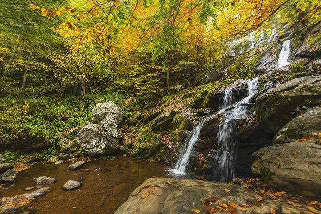 ảnh thác nước mùa thu đẹp