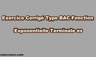 Exercice Corrigé Type BAC Fonction Exponentielle Terminale ES