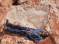Di Australia Ditemukan Jejak Kaki Dinosaurus Terbesar Di Dunia