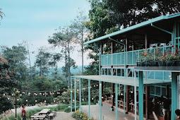 Alamat dan Daftar Harga Menu Utara Cafe Bandung