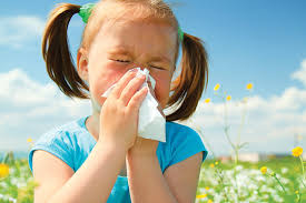 How to identify and treat allergies?