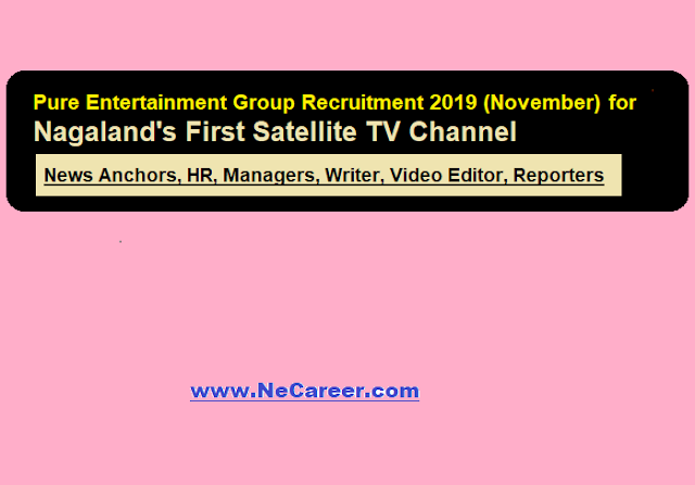 Pure Entertainment Group Recruitment 2019 (Nov) for Nagaland's First Satellite TV Channel - Various Posts