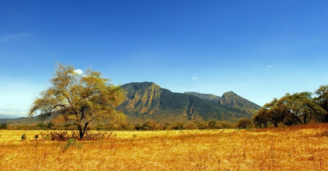 Places in Baluran National Park That Become the Target of Travelers