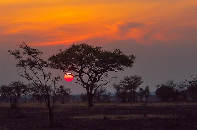 Serengeti Sunset in the Serengeti National Park Tanzania