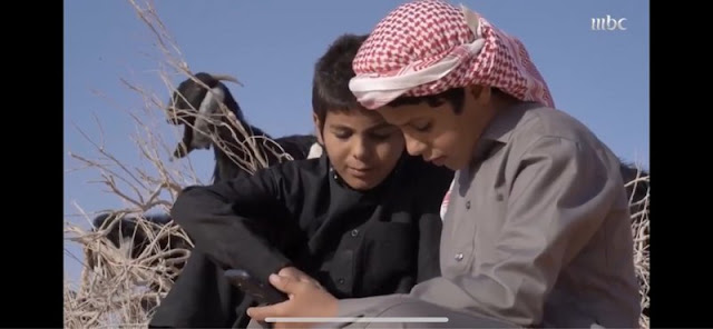 """السعودية ، حائل، أطفال يرعون ماشيتهم ويواصلون تعليمهم """"عن بُعد""""، حربوشة نيوز"""