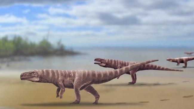 Representação de crocodilos bípedes/Reprodução