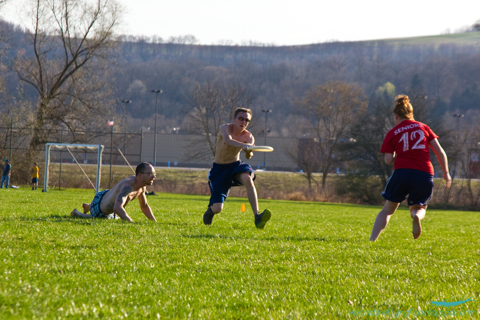 Volans in the Sky: ultimate frisbee