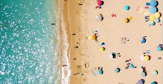 Πώς καταλαβαίνουμε αν μια θάλασσα είναι καθαρή ή μολυσμένη