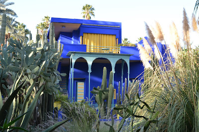 Multitud de plantas y todo lo demás de un intenso azul