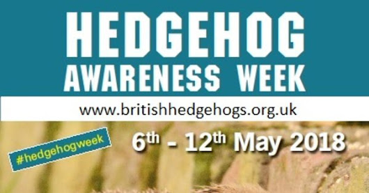 Chris Packham supports Hedgehog Awareness Week 2018