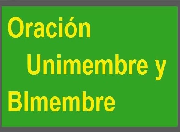 EJEMPLOS DE ORACIONES  UNIMEMBRES Y BIMEMBRES