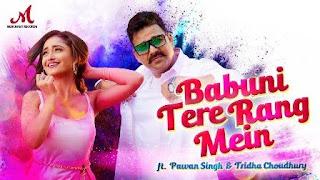 Babuni Tere Rang Mein Lyrics in English – Pawan Singh, Sharvi Yadav
