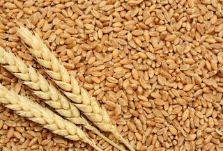 4930 metric ton arrival of wheat