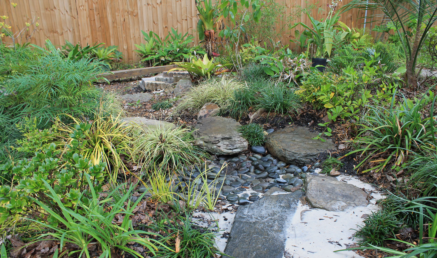 The rainforest garden how to design a dry creek bed 10 tips for Landscaping rocks and plants
