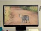 Cara Mengubah tampilan PC Windows 7 / 8 & 10 Menjadi Ubuntu