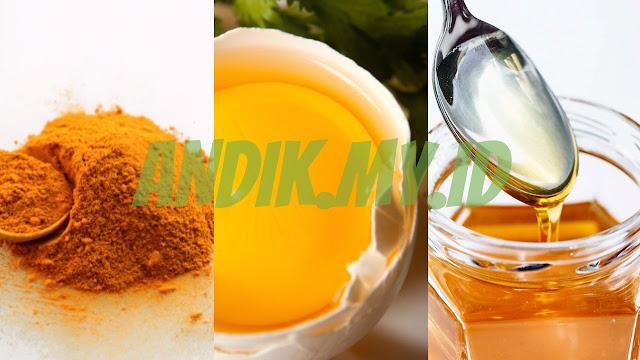 artikel, kesehatan, kunyit, madu, kuning telur ayam kampung, demam,