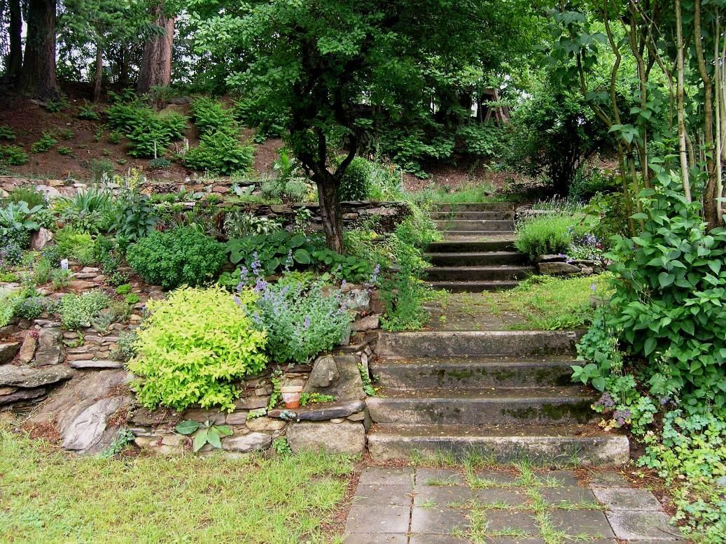 Dědečkova zahrada: Schody po dešti