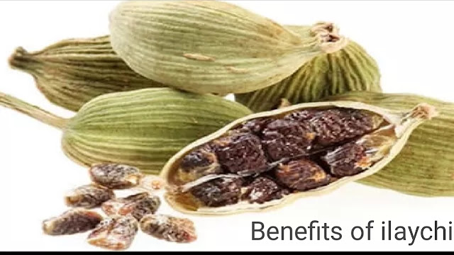 Accurate Benefits of Cardamom