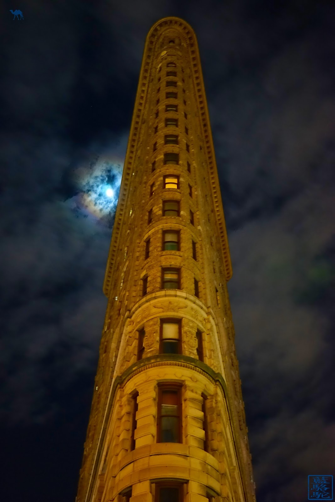 Le Chameau Bleu - New York Flat Iron by night - Attraction de New York