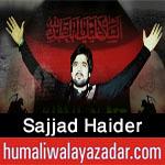 http://www.humaliwalayazadar.com/2016/06/sajjad-haider-nohay-2015-to-2017.html