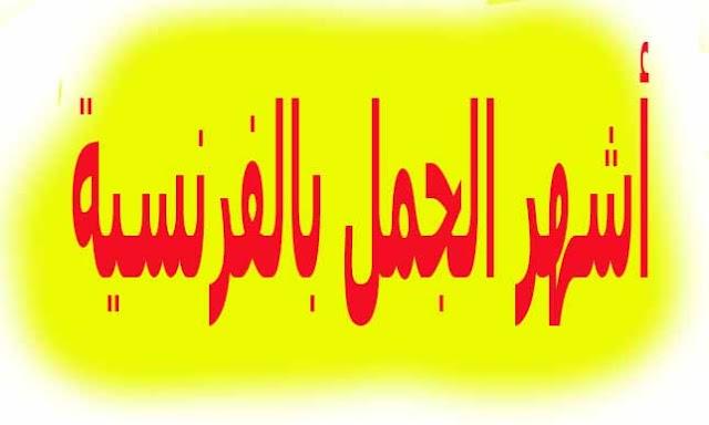 أشهر الجمل بالفرنسية تستخدم كثيرا في المحادثات مترجمة بالعربية