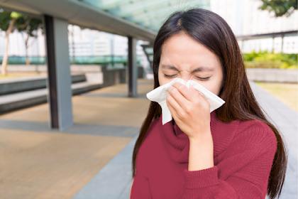 Rhinitis Alergi akibat Polusi dalam Ruangan