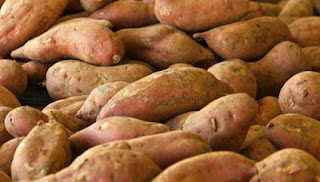 weet potato