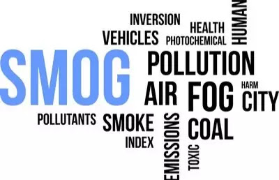 Effects of air pollution ozone holes and photochemical smog