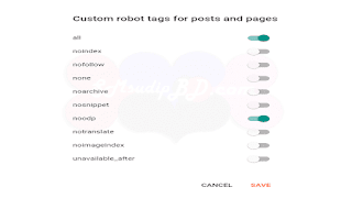 Enable Custom Robots tags for post and pages