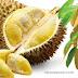 VIDEO: Identifikasi Buah Durian Sitokong