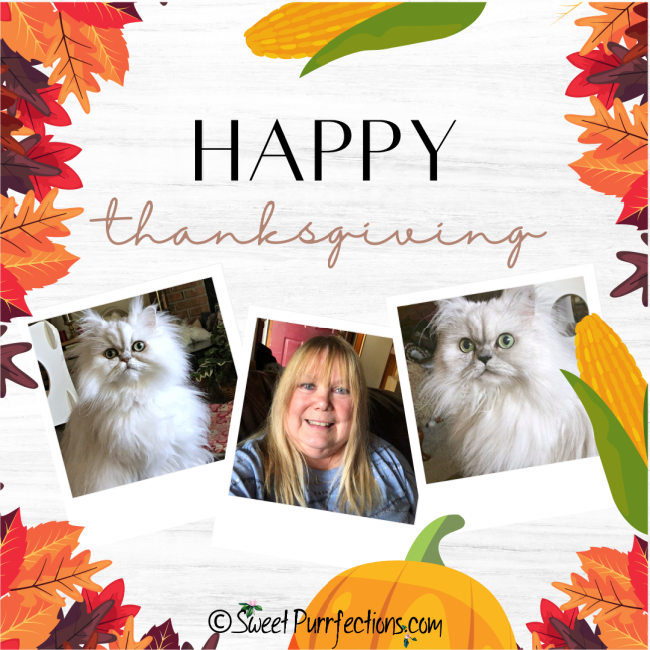 Thanksgiving graphic with 3 photos - one of Paula, one of Truffle, and one of Brulee