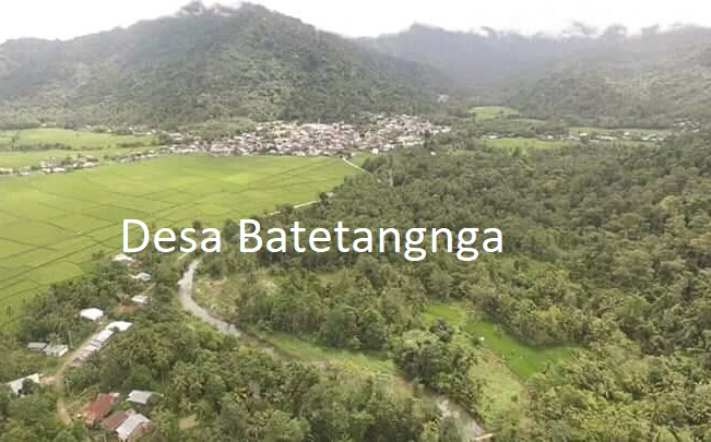 Program TORA Dibalik Upaya Pembebasan Hutan Lindung di Desa Batetangnga