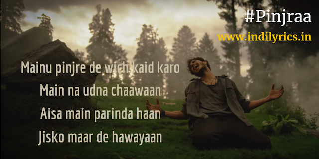Pinjraa | Gurnazar | Jaani | Complete Song Lyrics with English Translation and Real Meaning Explanation