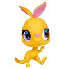 Littlest Pet Shop 3-pack Scenery Kangaroo (#2763) Pet
