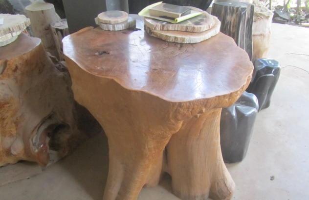 table petrified wood