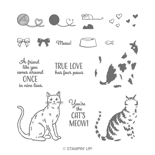 Craftyduckydoodah, Stampers By The Dozen, Nine Lives, Halloween 2019, Susan Simpson UK Independent Stampin' Up! Demonstrator, Cat Punch, Treat Holder, Supplies available 24/7 from my online store,