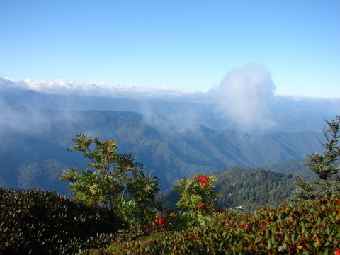 view from Mt. Leconte 2006