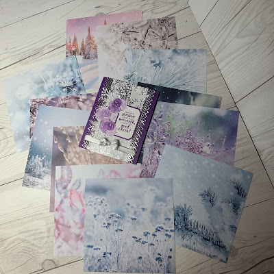 These are the print image sides of Feels Like Frost Designer Series Paper